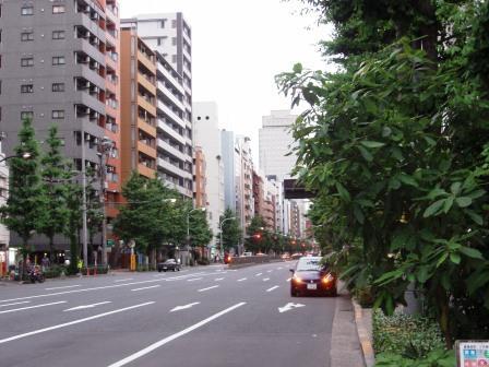 P6200579.jpg
